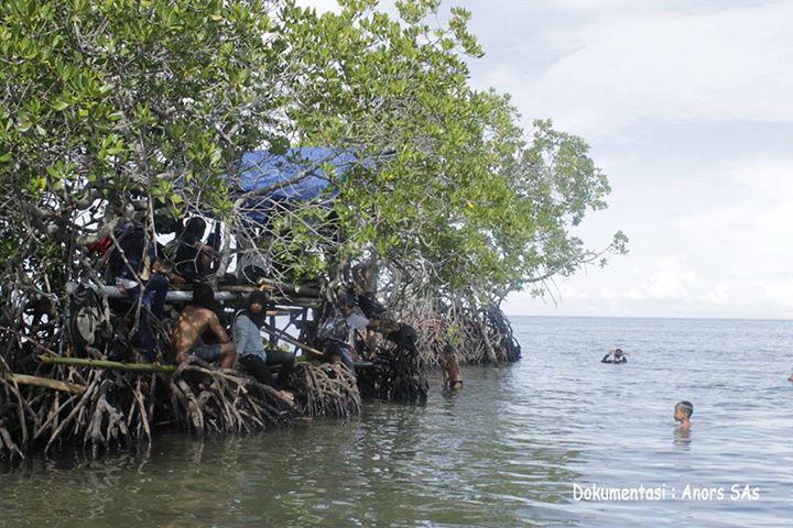 Taman Laut Gonda Desa Laliko Kec Campalagian Kab Polewali Pohon