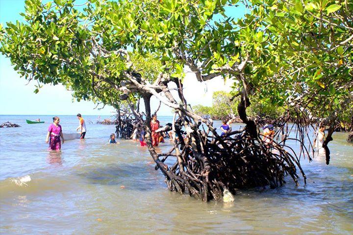 Ayo Wisata Dusun Gonda Kec Campalagian Polewali Mandar Blog Hutan
