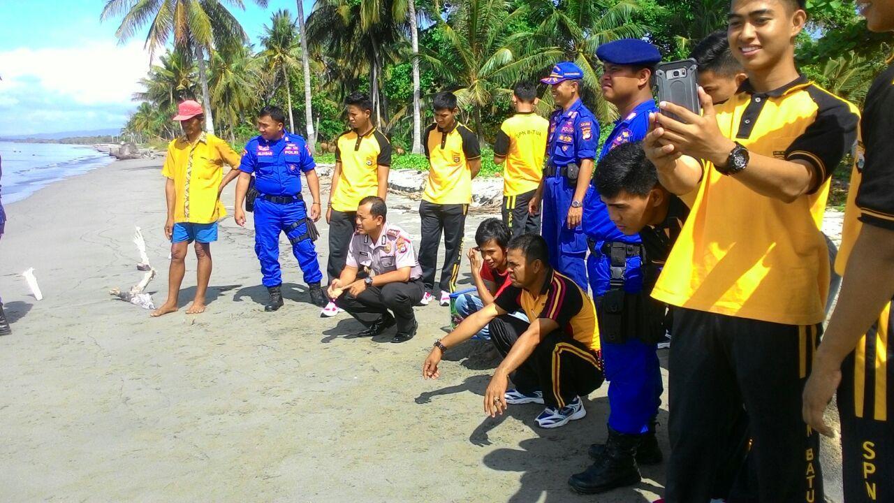 Bersama Warga Polres Polman Lepas Penyu Mampie News Kepolisian Resort