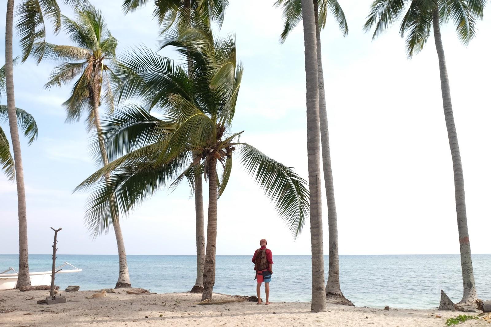 Pantai Palippis Keren Sulbar Mulai Tenar Kembali Teduh Banget Pohon