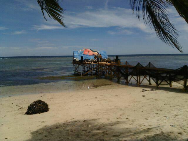 Potensi Wisata Pantai Palippis Diperkenalkan Lewat Festival Fokus Polman Fms
