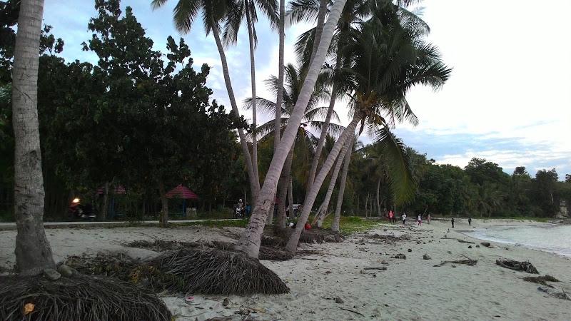 Tommuane Mandar Google Pantai Palippis Kab Polewali