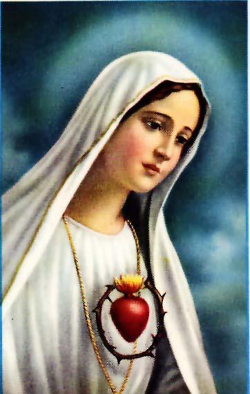 Doa Katolik Devosi Gua Maria Renungan Ziarah Batin Data Ditampilkan