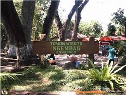 Wisata Ponorogo Gua Maria Fatima Kab