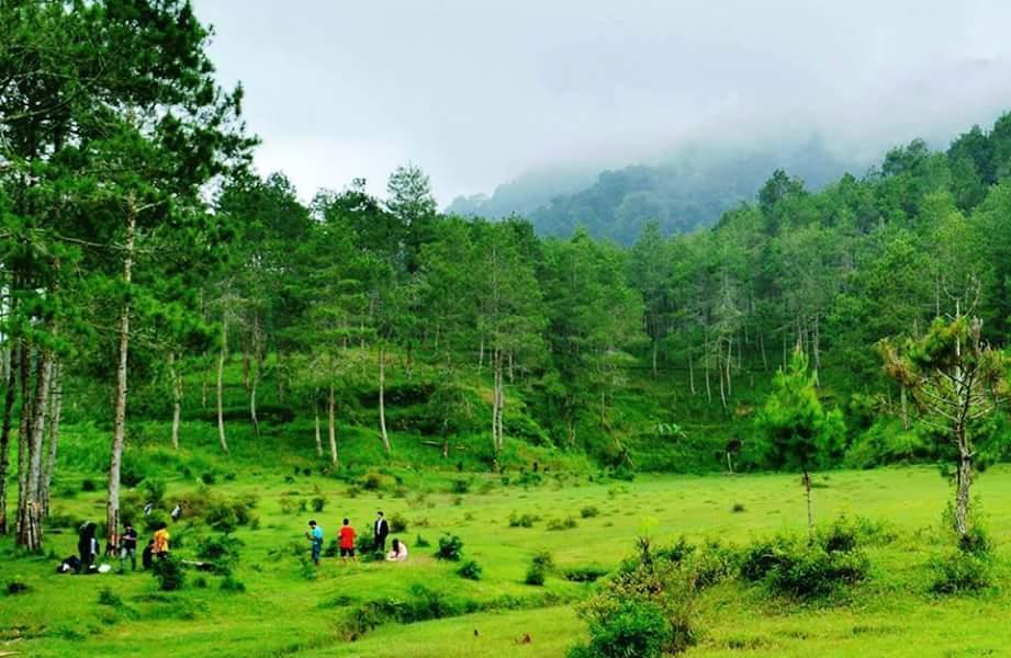 28 Tempat Wisata Ponorogo Menarik Kunjungi Daftar Taman Goyang Pudak