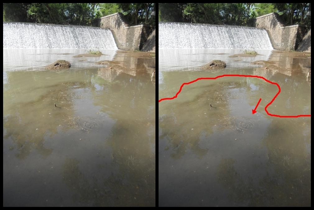 Wisata Ponorogo Taman Air Kintamani Kab