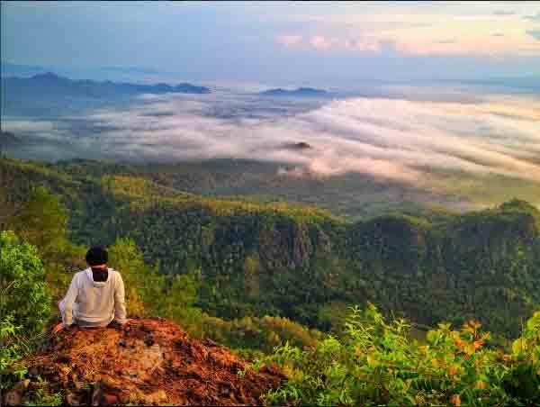 29 Tempat Wisata Ponorogo Terbaru Indah Menarik Alam Taman Ngembag
