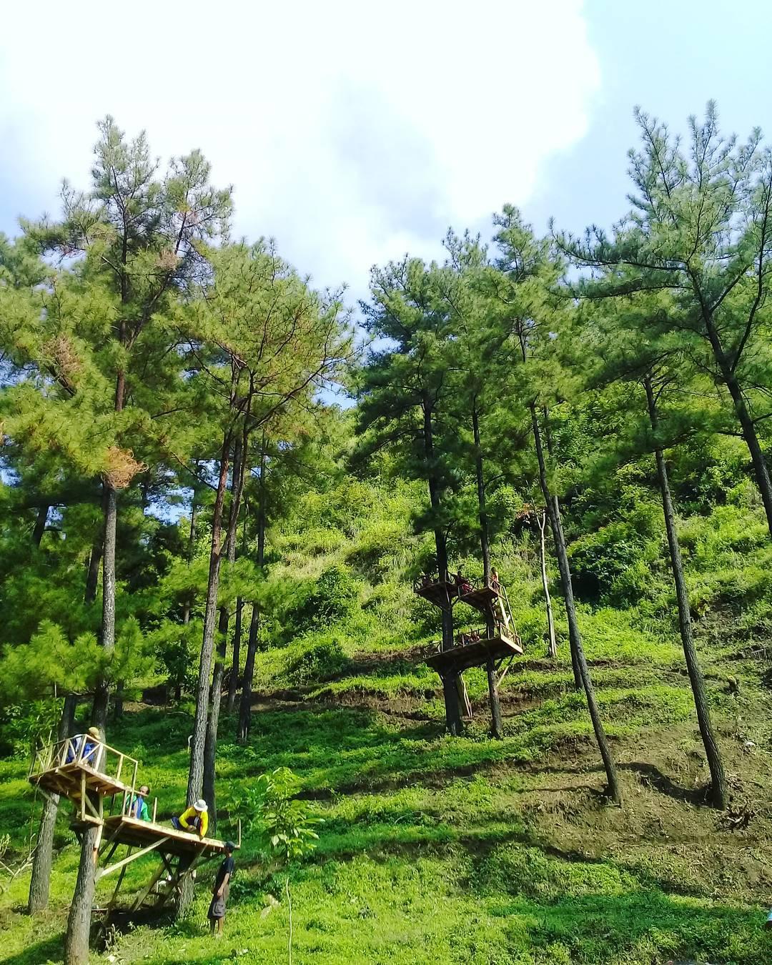 Hits Taman Kelinci Pembangunan Wisata Peningkatan Kualitas Hidup Ngembag Kab