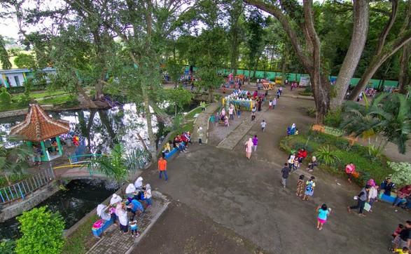 Pesona Keindahan Wisata Taman Ngembag Ponorogo Daftar Keberadaan Pohon Raksasa