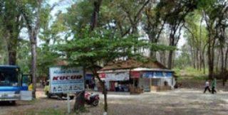 28 Tempat Wisata Ponorogo Jawa Timur Menarik Rimba Kucur Reog