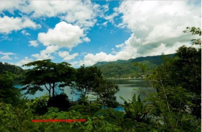 Rekomendasi Tujuan Wisata Ponorogo Telaga Ngebel Reog Desa Carat Sumoroto