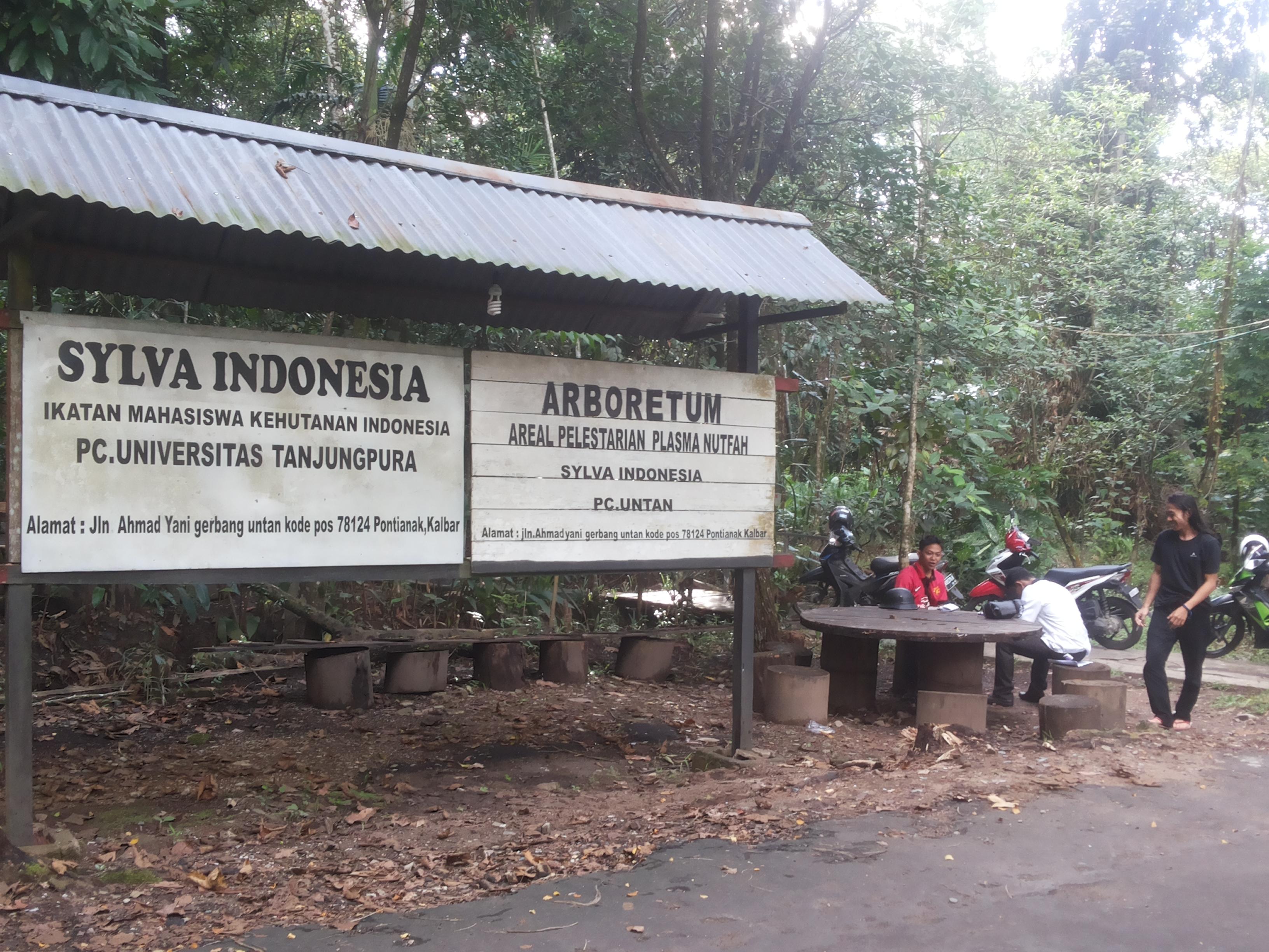 Arboretum Sylva Untan Internasional Thetanjungpuratimes Dorong Dikenal Dunia Hutan Kota