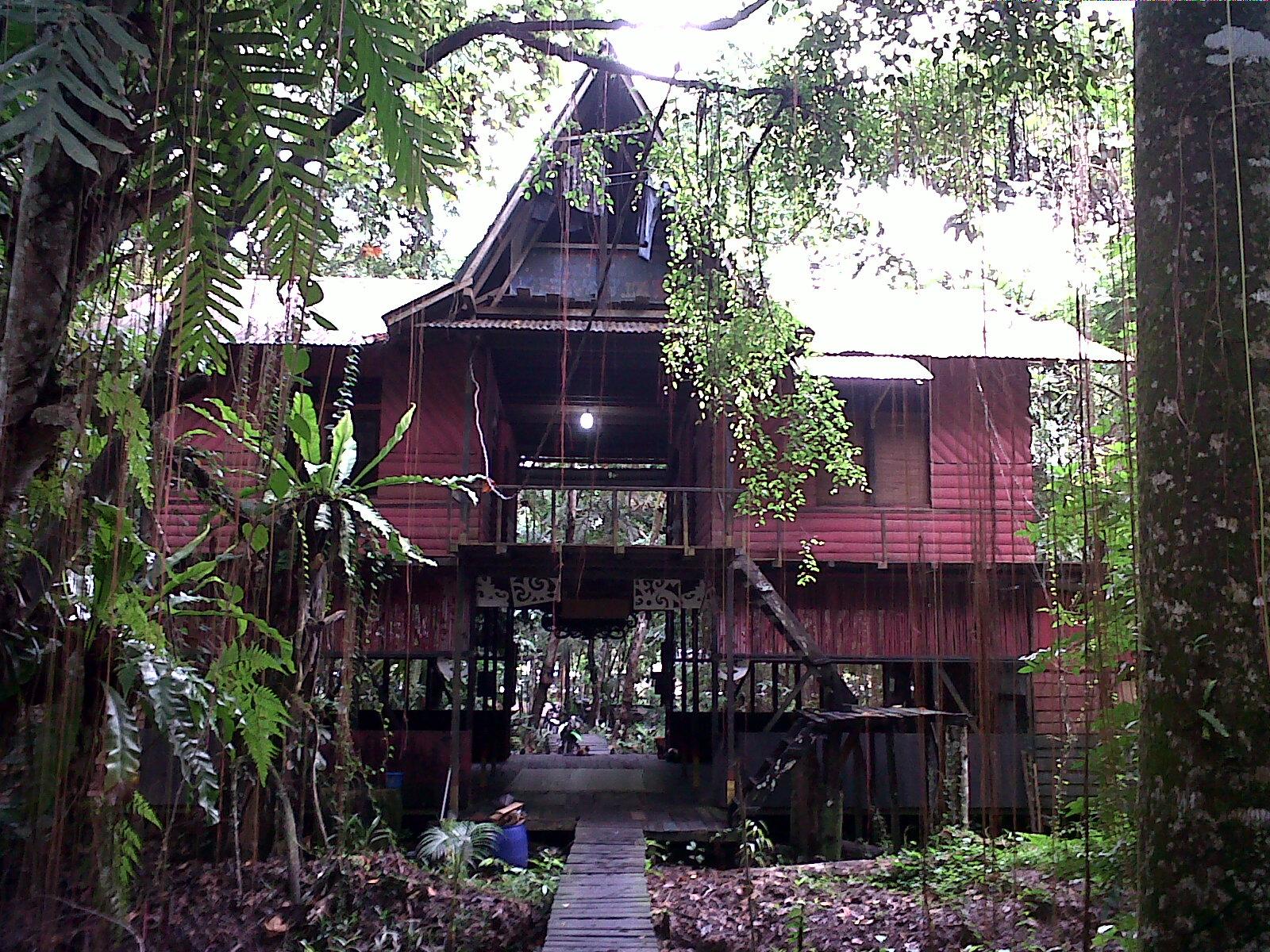 Blog 2015 Sekian Terima Kasih Hutan Kota Untan Kab Pontianak