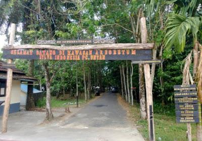 Borneo Kalimantan Barat November 2016 Hutan Kota Arboretum Sylva Untan