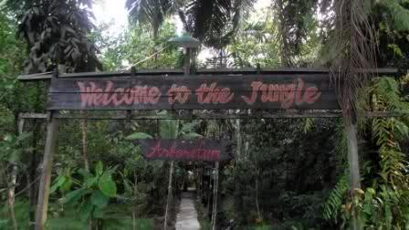 Budak Blogger Pesona Kalimantan Barat Hutan Kota Pontianak Untan Kab