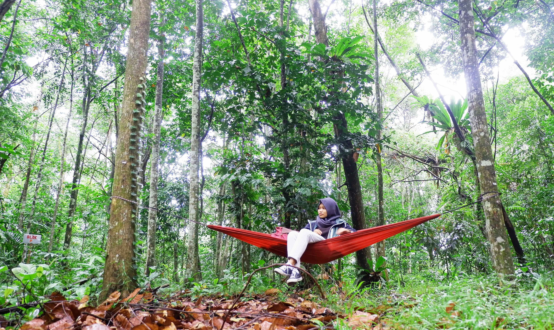 Desa Temajuk Surga Kecil Ujung Barat Pulau Kalimantan Djelajah Menghirup