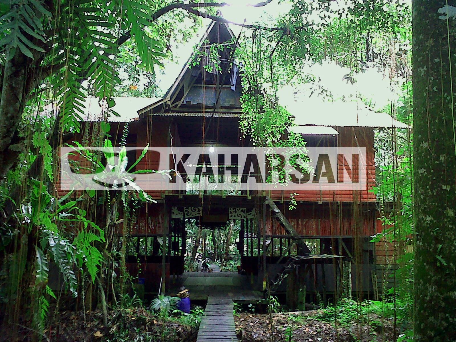 Pontianak Kota Wisata Menarik Indonesia Hutan Difungsikan Sebagai Kebun Koleksi