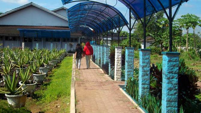 Kalimantan Barat Aloe Vera Centre Vihara Bodhisattva Karaniya Metta Kab
