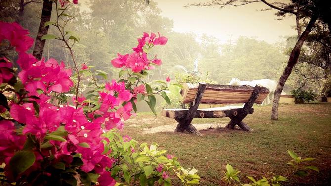Rekomendasi 16 Tempat Wisata Pontianak Sekitarnya Taman Bukit Bougenville Vihara