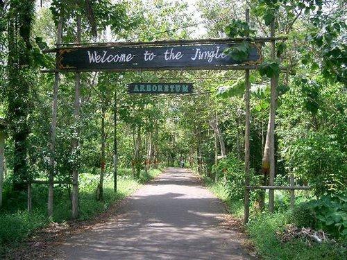 Tempat Wisata Pontianak Menarik Dikunjungi Info Hutan Kota Vihara Bodhisattva