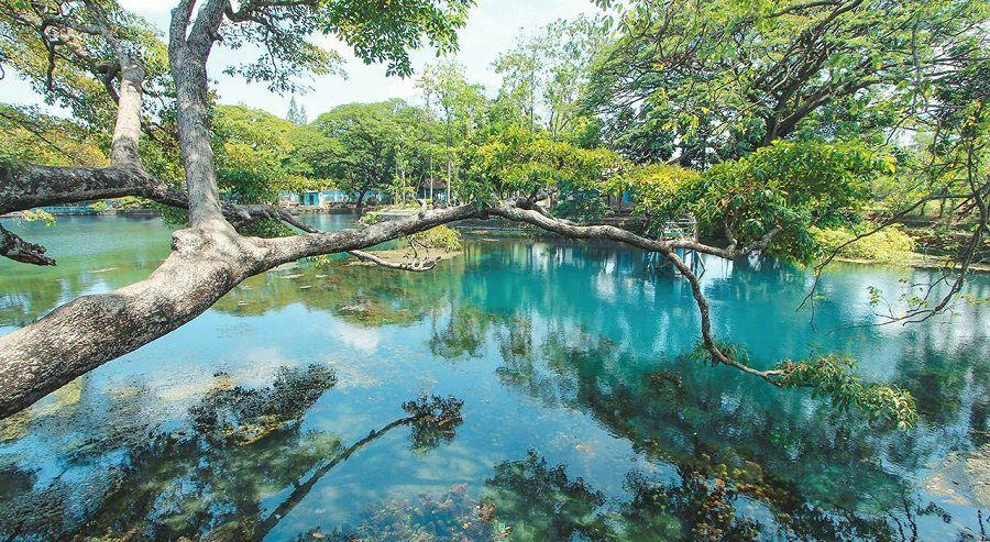 10 Tempat Wisata Probolinggo Wajib Dikunjungi Danau Ronggojalu Agrowisata Sumberbendo