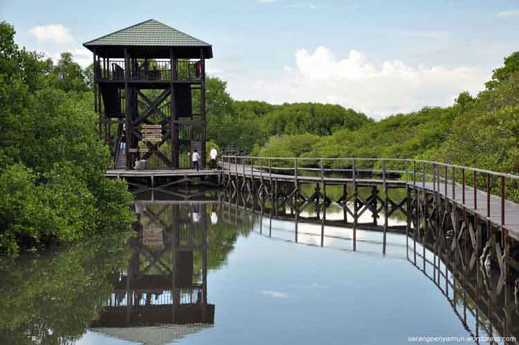 Tempat Wisata Probolinggo Terbaru 2018 Terbaik Indah Hutan Mangrove Agrowisata