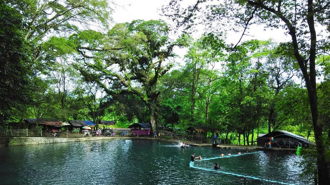 Travel Jogja Malang 62 89 66 99 366 80 Kimkanuruhantravel