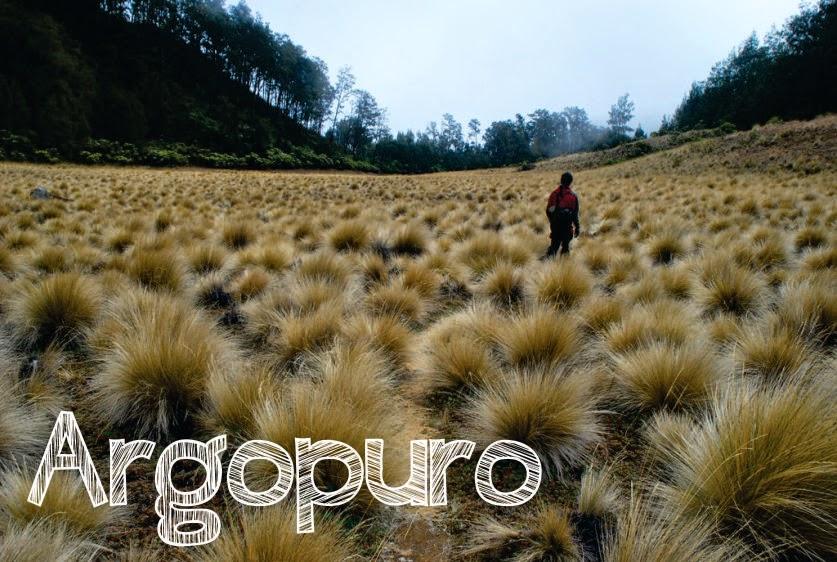 10 Gunung Indah Jawa Timur Argopuro Kab Probolinggo