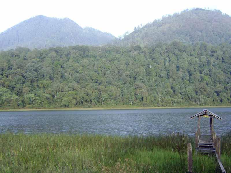 8 Obyek Wisata Probolinggo Patut Dikunjungi Gunung Argopuro Kab