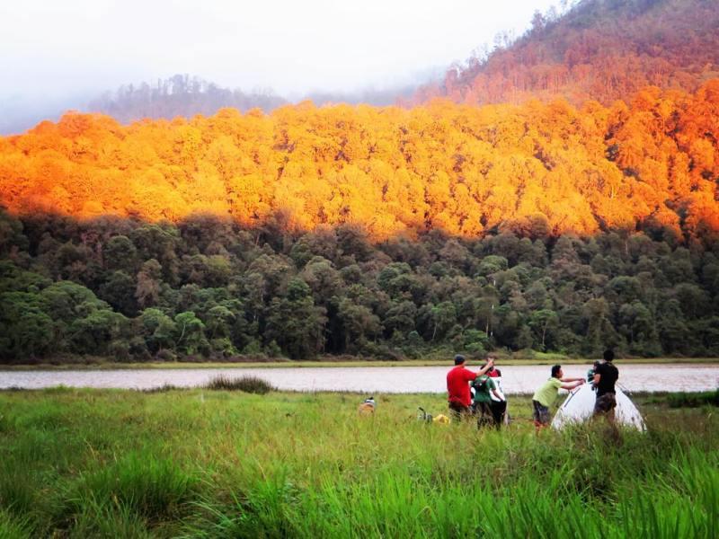 8 Tempat Wisata Probolinggo Tak Buatmu Bosan Ngadem Selagi Yuk