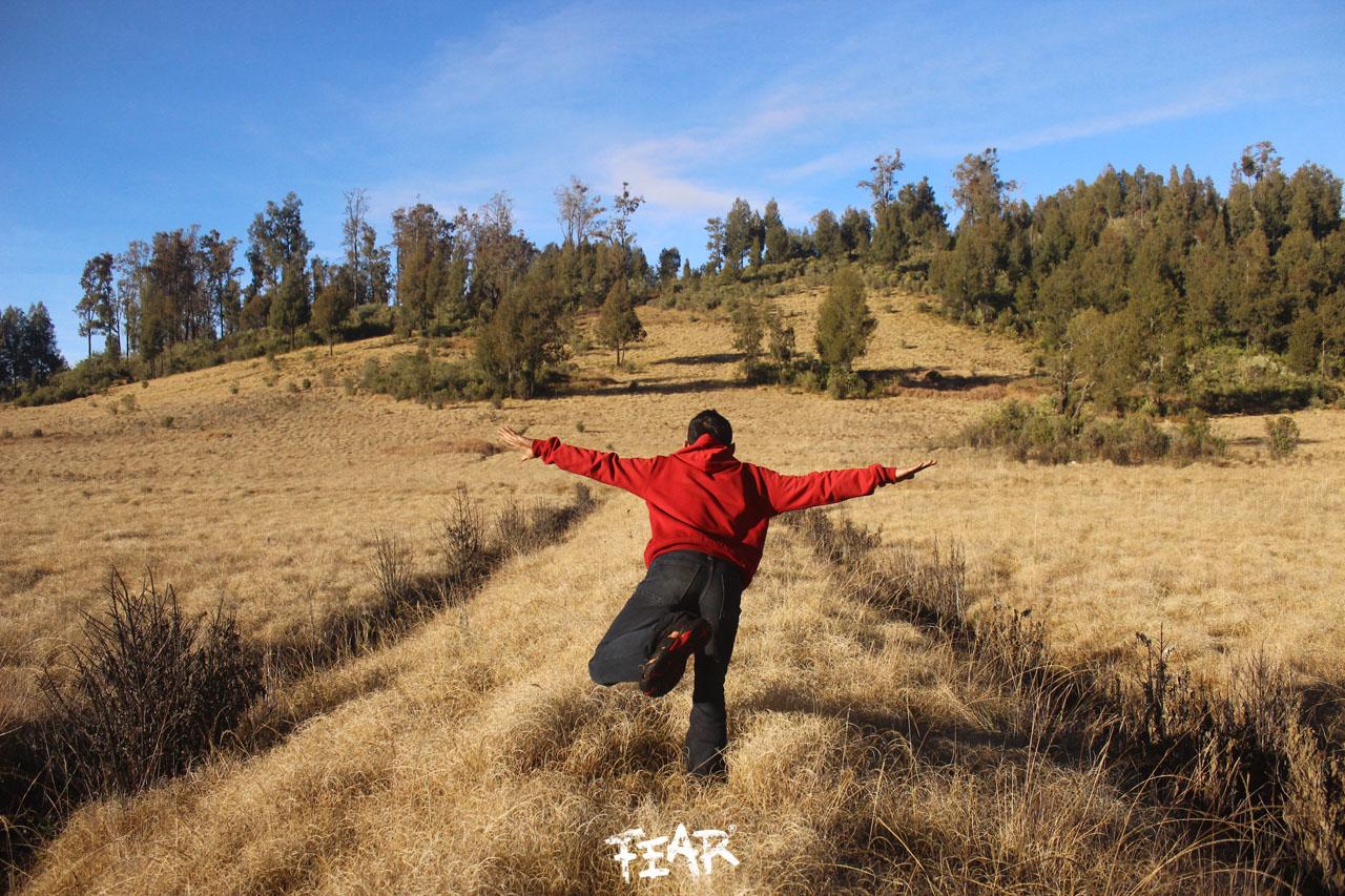 Argopuro Lintas Baderan Bremi F3lr Xplor3r Gunung Kab Probolinggo
