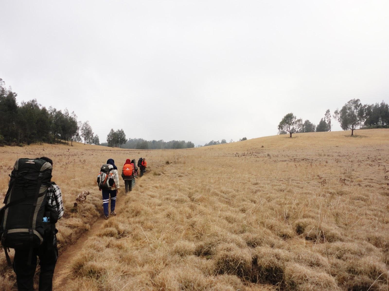 Dataran Tinggi Hyang Argopuro Kuc Blog Gunung Berada Jajaran Wilayah