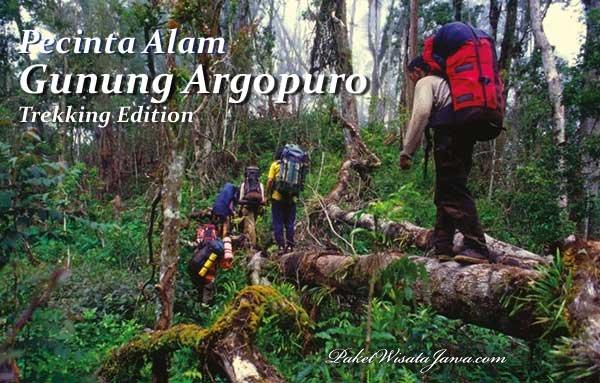 Gunung Argapura Panduan Trek Pendakian Jalur Bremi Probolinggo Argopuro Kab