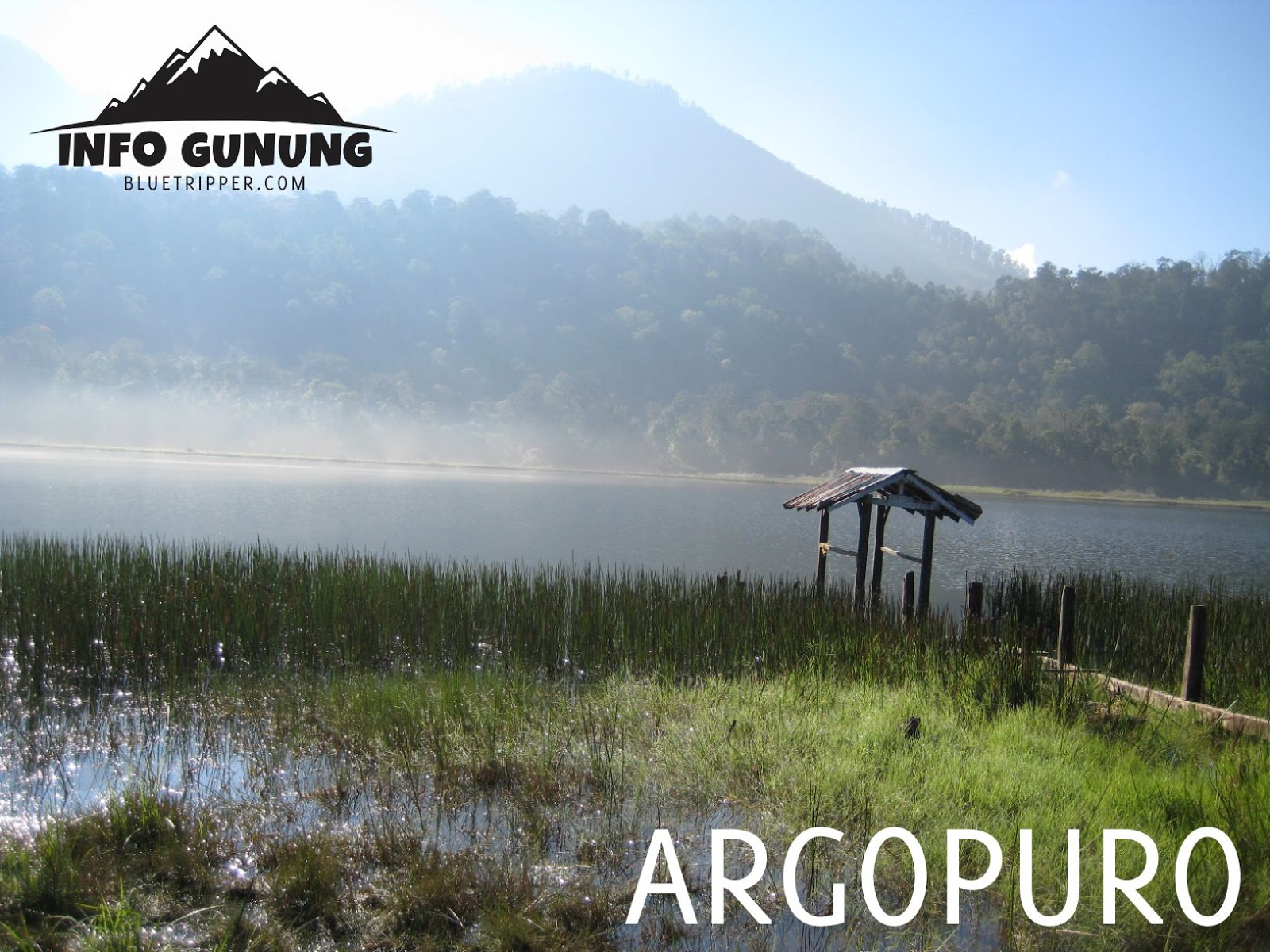 Gunung Argopuro 3 088 Mdpl Kab Probolinggo