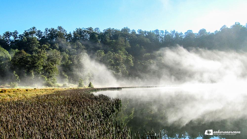 Gunung Argopuro Jalan Luasnya Belantara Ankarana Renva Kabut Tepi Danau