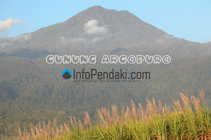 Gunung Argopuro Kab Probolinggo
