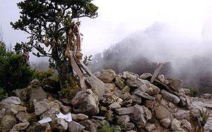 Gunung Argopuro Puncak Rengganis Bekas Berapi Kab Probolinggo