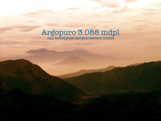Info Pendakian Gunung Argopuro Berada Ketinggian 3 088 Mdpl Terletak