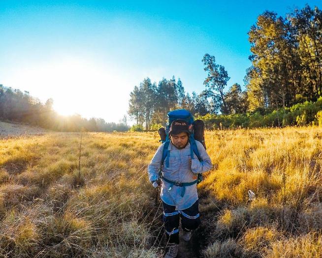 Jalur Pendakian Gunung Argopuro Berapi Terpanjang Jawa Padaang Savana Cikasur