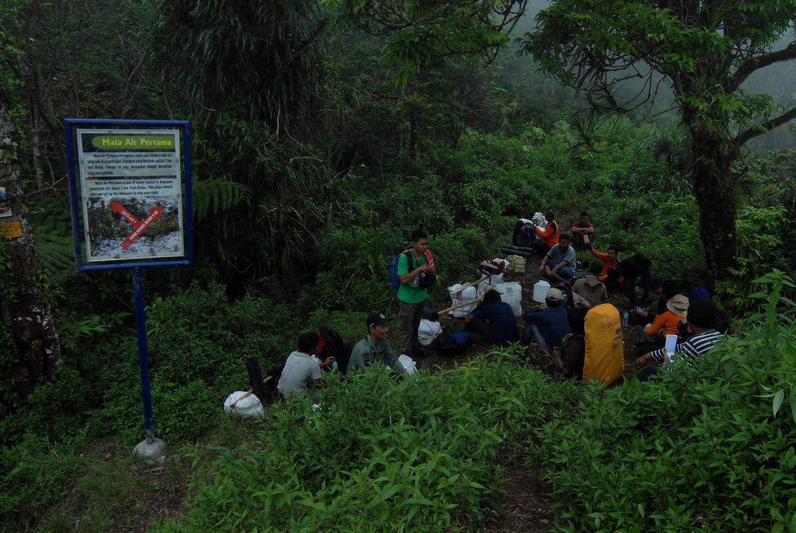 Melangit Membumi Sebuah Catatan Ekspedisi Argopuro 2011 Kawasan Seluas Melingkupi