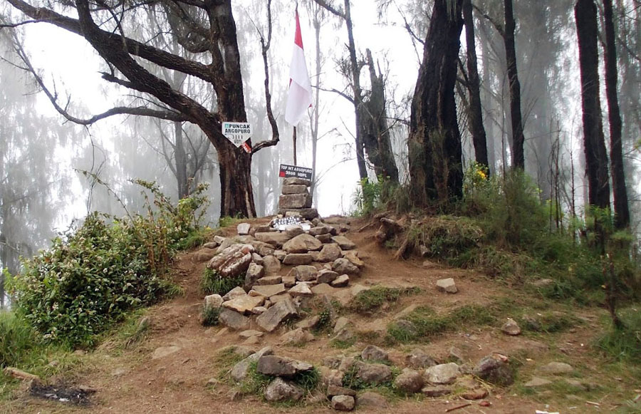 Pendakian Gunung Argopuro Lewat Jalur Bremi Puncak Bekas Kawah Mati