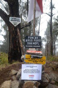Pendakian Gunung Argopuro Terminal Trip Kab Probolinggo