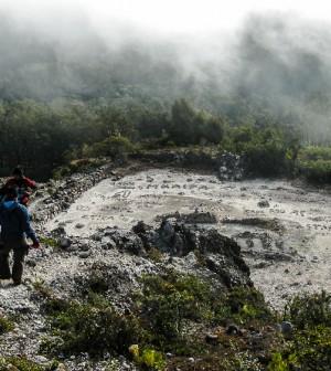 Puncak Rengganis Mistis Atas Gunung Argopuro Ensiklopedia Ketinggian 3 088