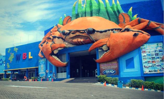 103 Wisata Probolinggo Terbaru Tempat Obyek Paket Bahari Lamongan Wbl