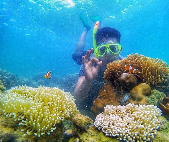 31 Tempat Wisata Probolinggo Ngetop Pulau Gili Ketapang Kolam Renang