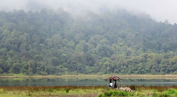 36 Tempat Wisata Probolinggo Hits Terbaru Wajib Danau Taman Hidup