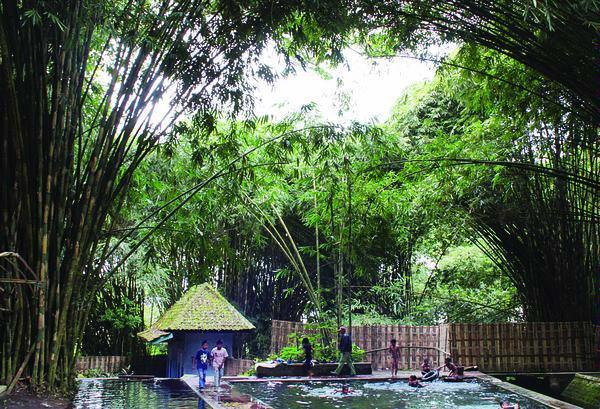 Tempat Wisata Hutan Bambu Kolam Renang Tra Taman Rekreasi Anak