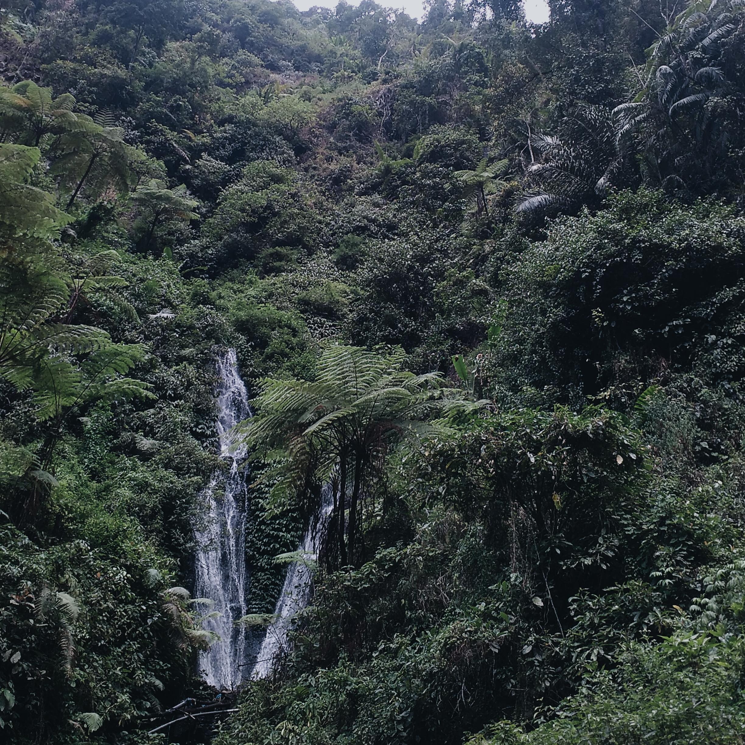 Air Terjun Madakaripura Legenda Pertapaan Maha Penampakan Jauh Serasa Berada