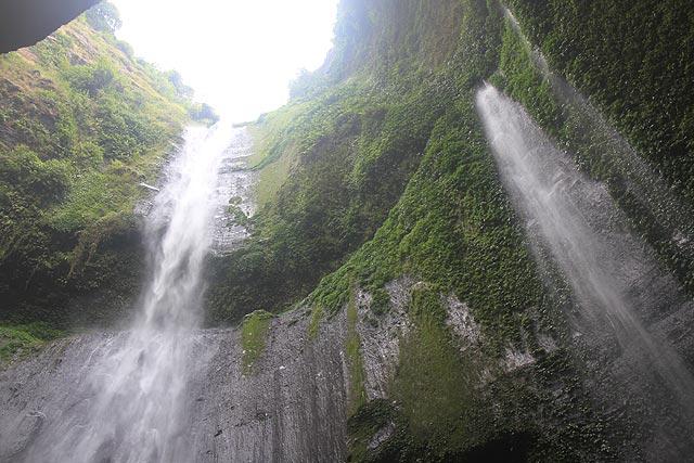 Air Terjun Madakaripura Megah Taman Nasional Bromo Tengger Hutan Kab