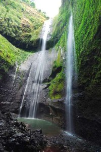 Air Terjun Madakaripura Muksanya Patih Gajah Mada Bali Backpacker Taman
